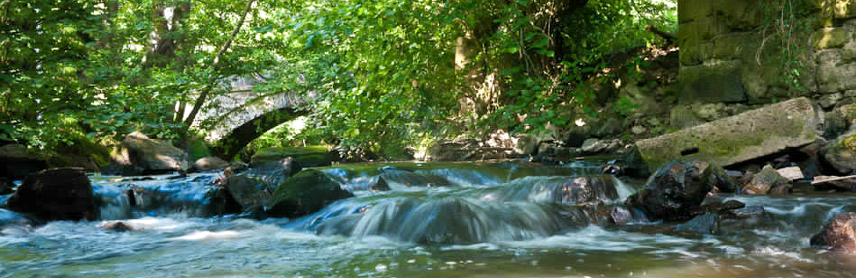 Renovatio River Estate